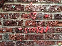 Storm in Seattle 3